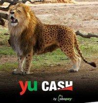yuCash